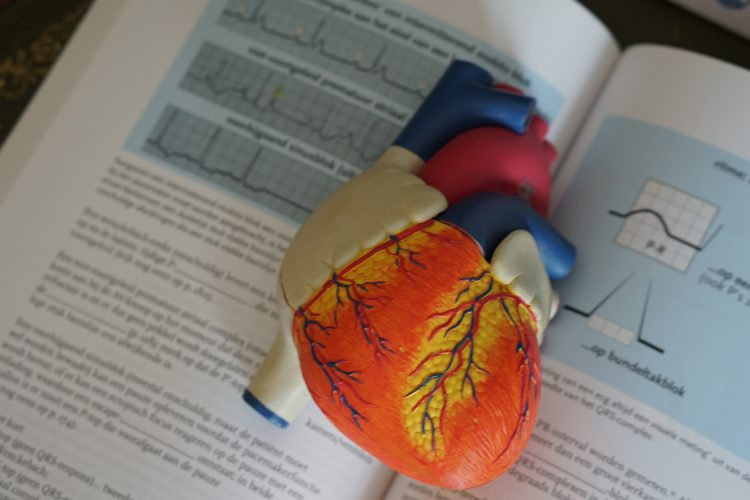 drugs addiction and heart health